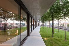 Image 13 of 43 from gallery of Maison des Etudiants / Lacroix Chessex. Photograph by Radek Brunecky Studio Apartment, Pathways, Modern Architecture, Facade, Photos, Sidewalk, Stairs, Building, Garden