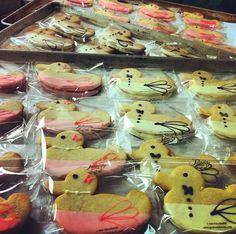 Bow Ties & Pearls! Fancy duck cookies. Peabody!