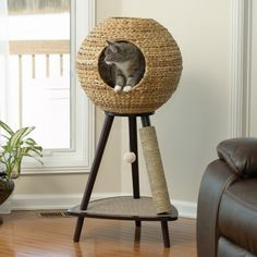 Gift your cat a new place to relax with the Sphere Cat Tower. The natural banana leaf sphere offers two cat-friendly access holes and plenty of style. One leg is wrapped in sisal rope for scratching and a carpeted base with hanging toy provides a lounging spot that doubles as a play area.