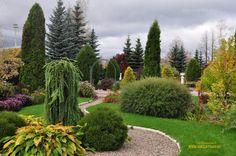 сад в пейзажном стиле - Поиск в Google