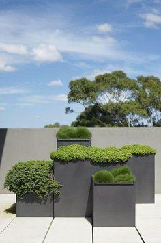 modern contemporary planters a great garden idea for a modern patio or deck - My Gardening Today Modern Landscape Design, Modern Garden Design, Modern Landscaping, Garden Landscaping, Modern Patio, Landscaping Ideas, Contemporary Landscape, Contemporary Gardens, Contemporary Architecture