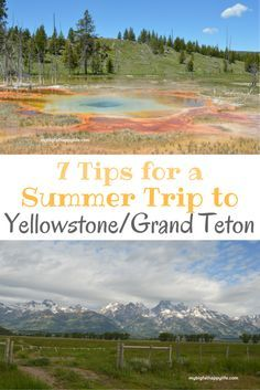 7 Tips for a Summer Trip to Yellowstone/Grand Teton National Parks - My Big Fat Happy Life