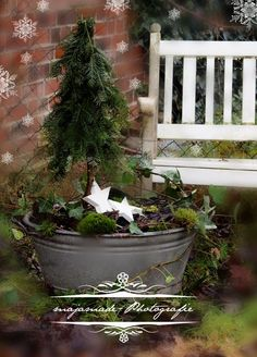 Christmas deco zinc tray with mini fir - Christmas Inspiration - weihnachts dekoration Christmas Porch, Noel Christmas, Country Christmas, Outdoor Christmas, Winter Christmas, Vintage Christmas, Christmas Crafts, Deco Nature, Deco Floral