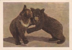 Vintage Photo by Bochinina (Bear Cubs) Postcard - 1963. The Truth, Moscow