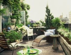 When I have a penthouse in NYC ~ I'll have a rooftop garden