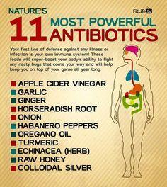 11 Natural Antibiotics