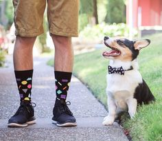 Turn on the weekend smile! @vectorthedesigndog #HappySocks #HappinessEverywhere