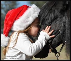 Miniature Therapy Horses of Gentle Carousel.