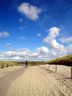 Isle ofTexel, Noord-Holland. Dunes. The Netherlands