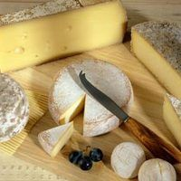 While cheese made from cow's milk dominates the U.S. market, cheeses made from the milk of other mammals are increasingly popular for their tastes, varieties and health benefits. Goat's milk, sheep's milk and buffalo's milk cheeses have higher amounts of nutrients than cow's milk cheeses and can be consumed by those intolerant to cow's milk....