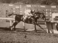 """Seventy four years ago March 2, 2014, Seabiscuit returned from severe injury to finally win the Santa Anita Handicap at the ripe old age of 7, equaling the track record and becoming the richest racehorse in history. On his back his old pal Red Pollard, who had previously shattered his leg so badly he'd been told he'd never walk again."" ""Old Pops and I have got four good legs between us,"" said Pollard. ""I hope that's enough."" It was."