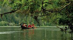 Xplora Seafari - Tour en Canoa hecha por Primeras Naciones Nativas de Canada