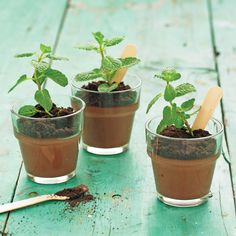 """Mini mint puddings sprout to life, thanks to a mint """"seedling"""" and some ground-cookie """"dirt."""""""