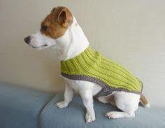Green Knit Dog Sweater / Dog Coat / Dog Clothes / Dog by mailo Pet Shop, Dog Accesories, Crochet Dog Sweater, Dog Jumpers, Dog Jacket, Dog Wear, Dog Sweaters, Dog Dresses, Cat Collars