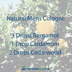 5 essential oil cologne blends for men. Ditch the chemical cologne and try these blends of essential