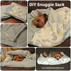Easy DIY Pet Projects   DIY Doggie Snuggle Sack by DIY Ready http://diyready.com/best-diy-pet-projects-to-keep-your-furry-friends-happy/