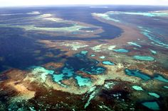 Aerial view of Abrolhos Island