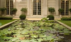Russell Page's Garden at the Frick Collection