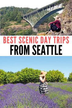 These scenic drives near Seattle makes one of the best day trips from Seattle. #scenicdrivesnearseattle #scenicdrivesaroundseattle #scenicdrivesinseattle #seattlescenicdrives #bestdaytripsfromseattle #seattledaytripsbucketlists #seattledaytrips #bestdaytripsfromseattle #washingtonroadtrip #roadtripspacificnorthwest #thingstodoinseattleroadtrip Day Trips From Seattle, Stuff To Do, Things To Do, Road Trip Essentials, Amazing Destinations, Foodie Travel, Washington State, Weekend Getaways, Pacific Northwest