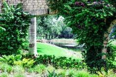 arch-trellis-gardens