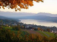 Hotel Restaurant Eichberg, Herbst 3, Seengen, Hallwilersee, Seetal, Aargau, Suisse, Schweiz, Switzerland. www.vch.ch/eichberg/