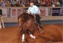 Electric Code | Electric Code – Reining Horse Stallion