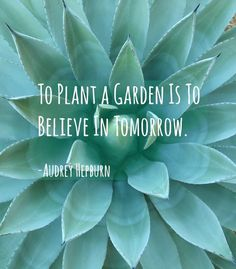 Gardeners have a lot of wisdom to share. Words of wisdom come to us during the many hours of solitud...