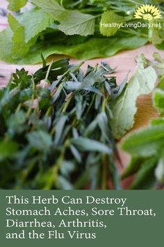 This Powerful Herb Can Destroy Stomach Aches, Sore Throat, Diarrhea, Arthritis, and the Flu Virus… 👊🤩👍   This powerful herb can destroy stomach aches and other diseases. Click here to find out more.   #herb #powerfulherb #stomachaches #sorethroat #diarrhea #arthritis #fluvirus #thymeessentialoil #hypertensive #antiseptic #antirheumatic #tonic #thyme #thymol #painrelief #painreliever #healthyfats #painremedy #herbalremedy #healthylivingdaily #followme #follow