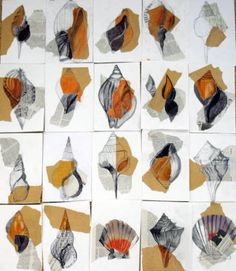 Year 10 observational drawing of a shell - paper, newspaper, pen, pencil and… Jahr 10 Beobachtungsze Gcse Art Sketchbook, Sketchbooks, Sketchbook Ideas, Sketchbook Inspiration, Shell Drawing, Natural Form Art, Sea Life Art, Observational Drawing, Nature Drawing