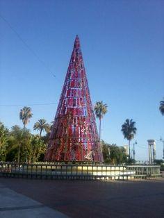 Arbol de Navidad en la Plaza de la Marina, Malaga