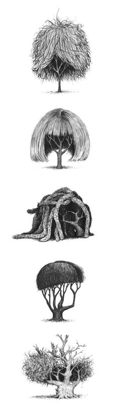 Trees with hair.....oh my goodness!