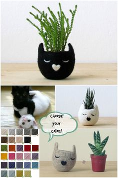 Free Shipping - Small succulent pot / Cat head planter / Black cat / Felt succulent planter  / cat lover gift - Choose your color!