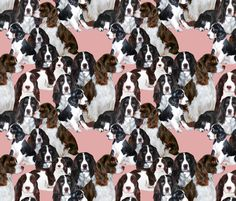 "Springer Spaniels in a collage seamless pattern is the theme of this original design cotton fabric.the spaniels who were the models for this design are from ""Piper's springers"", many thanks to their b"