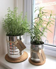 Tin Can Herb Garden- Herb Gardens To Practice Your Green Thumb With | DIY to Make