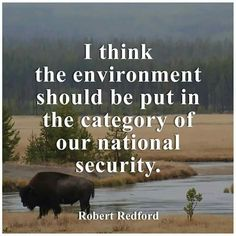 I think the environment should be put in the category of our national security - Robert Redford