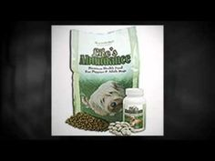 You Can Buy Life's Abundance Dog Food Wholesale Here http://www.youtube.com/watch?v=kZ9w1hFztu4 #lifesabundancedogfood
