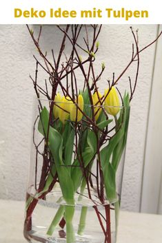 Spring decoration with tulips in the glass. Vase decoration idea for spring. Make DIY instructions for a quick early lens decoration yourself. Indoor Garden, Indoor Plants, Deco Table, Vases Decor, Ikebana, Free Food, Floral Arrangements, Terrarium, Diy And Crafts