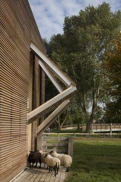 Petting Farm, by 70F Architecture.