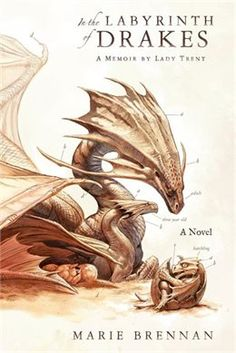 Book In The Labyrinth Of Drakes by Marie Brennan