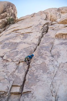 There are 9 campgrounds in Joshua Tree National Park. Find the best campsites for climbing, RV campers and groups. How to find free camping on BLM nearby. Climbing Holds, Rock Climbing, Mountain Climbing, Joshua Tree National Park, National Parks, Joshua Tree Camping, Travel Trailer Camping, Rv Travel, Travel Trailers