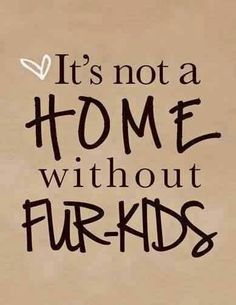 Fur kids are a must! ♥