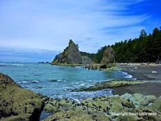 Rialto Beach is my favorite spot in Olympic National Park; rugged beaches, sea stacks, tide pools, cliffs and forest. Being a Southern California beach girl, it was amazing to see deer tracks right on the sand. Definitely a first. The Camping Queen: Olympic National Park, Washington