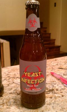 This is the beer I brewed at home last summer
