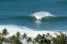 Pipeline from above #pipeline #hawaii