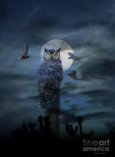 Funny Happy Halloween Scary Owl and Full Moon card. Personalize any greeting card for no additional cost! Cards are shipped the Next Business Day. Halloween Wallpaper Cute, Scary Owl, Halloween Owl, Happy Halloween, Barred Owl, Owl Card, Owl Pictures, Graffiti Wall Art, Great Horned Owl