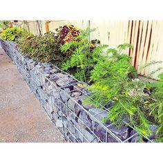 ガビオン。メッキ処理したスチールメッシュで箱を作って中に石などを入れる。コンクリートブロックやアルミフェンスが嫌いなので外構工事はガビオンと木の柵でキメる。木鉄石だけで作るのが好きです。#ガビオン #glam_plan#石#蛇籠#外構#庭#花壇#植物#マイホーム#ライフスタイル#暮らし#myhome#lifestyle#solaの家#新築#住宅#設計#設計事務所#建築