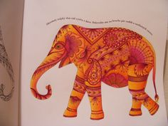 the elephant from Animal kingdom colouring book
