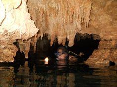 http://www.tripadvisor.com.mx/Attraction_Review-g150813-d1632455-Reviews-LabnaHa_Cenotes_Eco_Park-Tulum_Yucatan_Peninsula.html