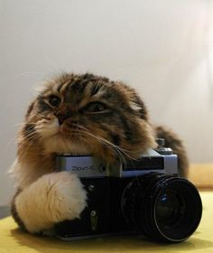 He thinks he's a photographer now.