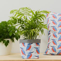 Brighten up your home with a new plant pot. Our kingfisher textile planters are perfect for adding a splash of colour and to hide those ugly plastic pots! Our plant post are perfect for house plants, succulents and cacti or herbs on the kitchen window. Each pot is made from digitally printed cotton and lined with a waterproof fabric, perfect for catching stray drips. These pots are the perfect accessory to add a pop of colour to your home, too gift to a plant fan or as a lovely housewarming… Succulent Pots, Cacti And Succulents, Potted Plants, Textiles, Textile Prints, Fabric Storage Baskets, Basket Storage, Pot Storage, Plastic Plant Pots